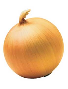 Certified Onions Member